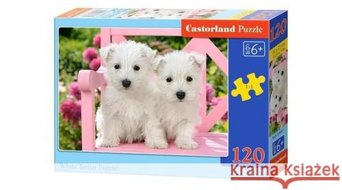 Puzzle White Terrier Puppies 120  5904438013494