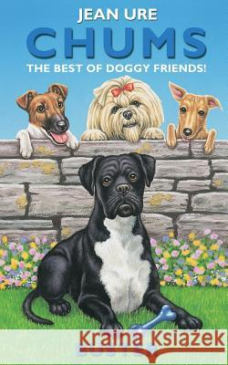 Buster (Chums) Jean Ure 9780006755098 HARPERCOLLINS PUBLISHERS
