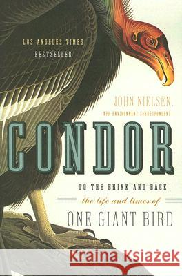 Condor: To the Brink and Back--The Life and Times of One Giant Bird John Nielsen 9780060088637