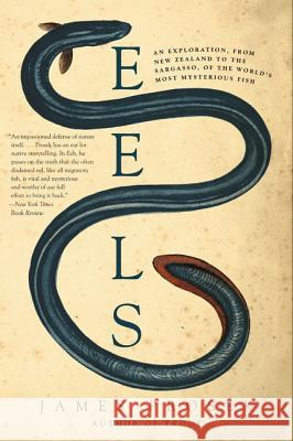 Eels: An Exploration, from New Zealand to the Sargasso, of the World's Most Mysterious Fish James Prosek 9780060566128 Harper Perennial