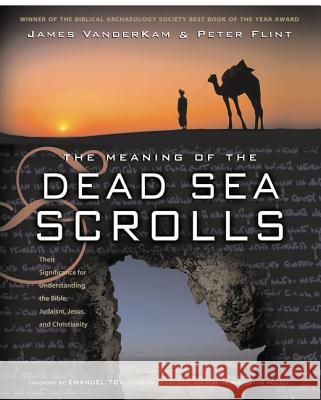 The Meaning of the Dead Sea Scrolls: Their Significance for Understanding the Bible, Judaism, Jesus, and Christianity James C. VanderKam Peter W. Flint 9780060684655