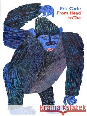 From Head to Toe Eric Carle Eric Carle 9780061119729