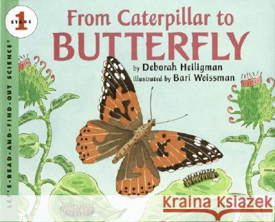From Caterpillar to Butterfly Bari Weissman 9780061119750