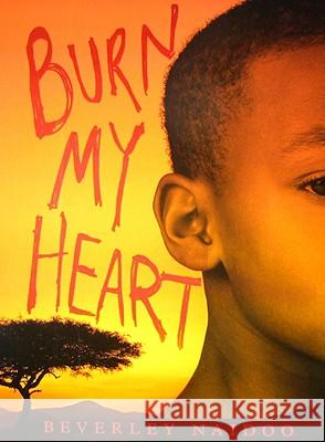 Burn My Heart Beverley Naidoo 9780061432972 Amistad Press