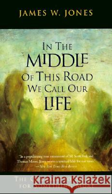 In the Middle of This Road We Call Our Life: The Courage to Search for Something More James W. Jones 9780062509611