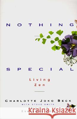 Nothing Special Charlotte Joko Beck Steve Smith 9780062511171