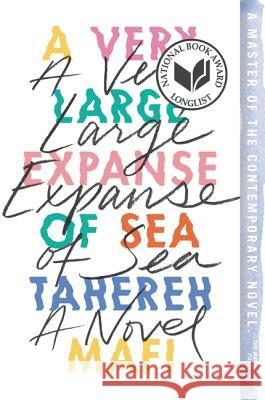 A Very Large Expanse of Sea Tahereh Mafi 9780062866578