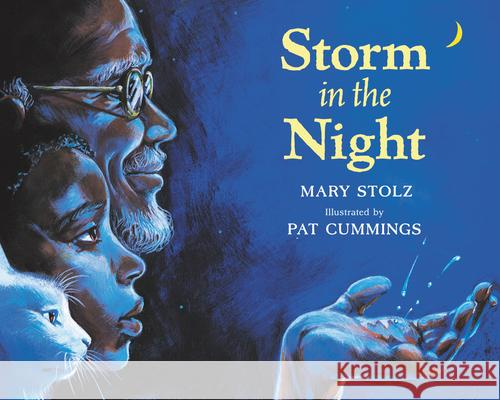Storm in the Night Mary Stolz Pat Cummings 9780064432566