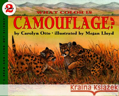 What Color Is Camouflage?: An Incredible Story of Hope, Triumph, and Everyday Joy Carolyn Otto Megan Lloyd 9780064451604