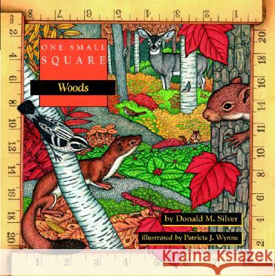 One Small Square: Woods Donald M. Silver Patricia Wynne Patricia Wynne 9780070579330