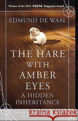 The Hare With Amber Eyes : A Hidden Inheritance Edmund Waal 9780099539551