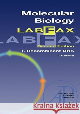 Molecular Biology Labfax: Recombinant DNA T. A. Brown Terry A. Brown David Hames 9780121360559