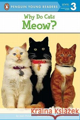 Why Do Cats Meow? Joan Holub Anna DiVito 9780140567885 Puffin Books