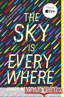 The Sky Is Everywhere Jandy Nelson 9780142417805