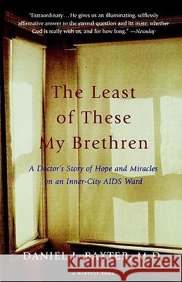 The Least of These My Brethren: A Doctor's Story of Hope and Miracles in an Inner-City AIDS Ward Daniel J. Baxter 9780156005883