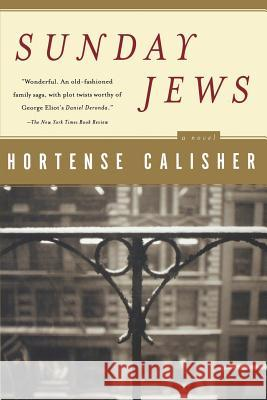 Sunday Jews Hortense Calisher 9780156027458