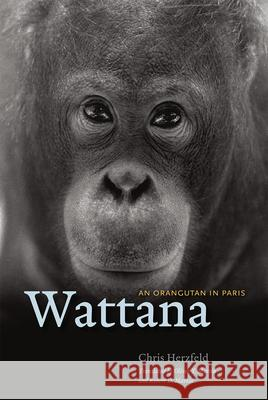 Wattana: An Orangutan in Paris Chris Herzfeld Oliver Martin Robert D. Martin 9780226168593 University of Chicago Press