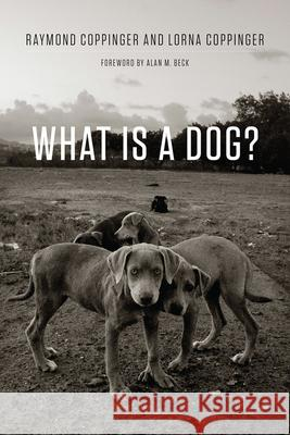 What Is a Dog? Raymond Coppinger Lorna Coppinger Alan Beck 9780226478227 University of Chicago Press