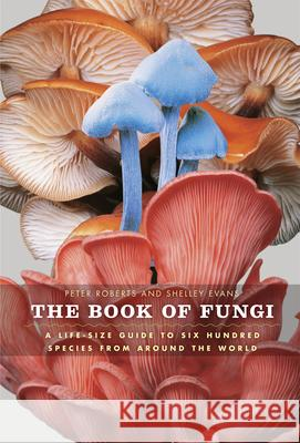 The Book of Fungi: A Life-Size Guide to Six Hundred Species from Around the World Peter Roberts Shelley Evans 9780226721170