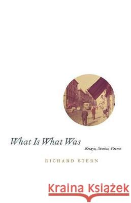 What Is What Was University of Chicago Press              Richard G. Stern 9780226773261