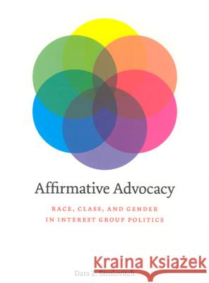 Affirmative Advocacy: Race, Class, and Gender in Interest Group Politics Dara Z. Strolovitch 9780226777405