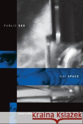 Public Sex/Gay Space William L. Leap 9780231106917