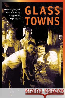 Glass Towns: Industry, Labor, and Political Economy in Appalachia, 1890-1930s Ken Fones-Wolf 9780252073717