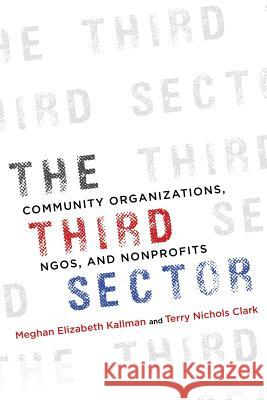 The Third Sector: Community Organizations, Ngos, and Nonprofits Meghan Kallman Terry Clark 9780252084294