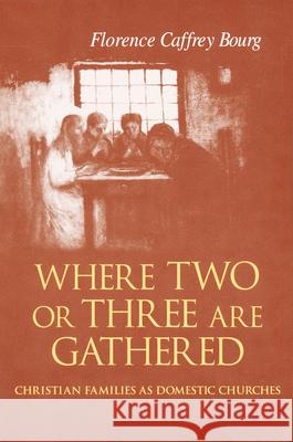Where Two or Three Are Gathered: Christian Families as Domestic Churches Florence Caffrey Bourg 9780268044053