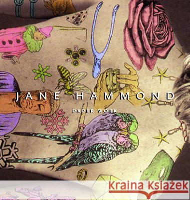 Jane Hammond: Paper Work Jane Hammond Marianne Doezema 9780271029818