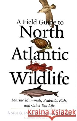 A Field Guide to North Atlantic Wildlife: Marine Mammals, Seabirds, Fish, and Other Sea Life Noble Proctor Patrick Lynch 9780300106589