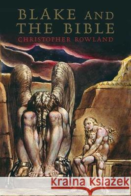 Blake and the Bible Christopher Rowland 9780300112603