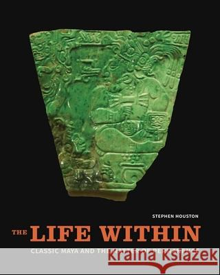 The Life Within: Classic Maya and the Matter of Permanence  9780300196023