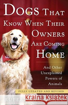 Dogs That Know When Their Owners Are Coming Home: And Other Unexplained Powers of Animals Rupert Sheldrake 9780307885968 Three Rivers Press (CA)
