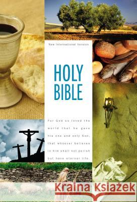 Textbook Bible-NIV Zondervan Publishing 9780310435228