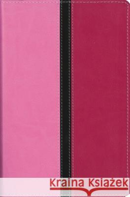 Busy Mom's Bible-NIV: Daily Inspiration Even If You Only Have One Minute Zondervan Publishing 9780310435570