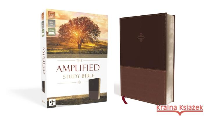 Amplified Study Bible, Imitation Leather, Brown  9780310440802
