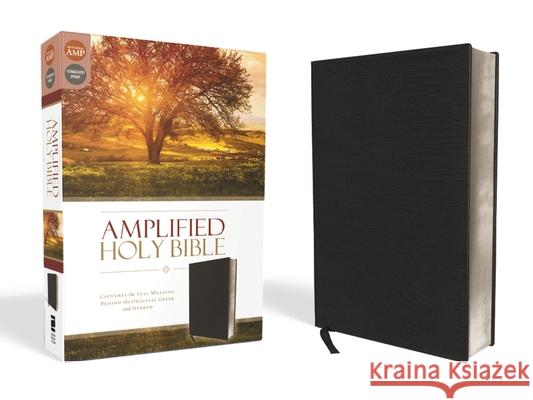 Amplified Bible-Am: Captures the Full Meaning Behind the Original Greek and Hebrew  9780310443926