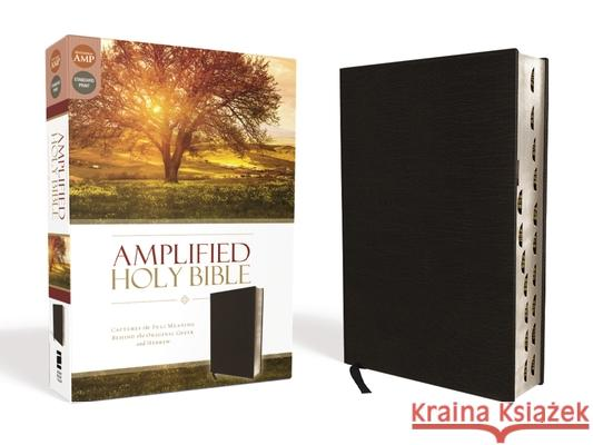 Amplified-Am: Captures the Full Meaning Behind the Original Greek and Hebrew  9780310443933