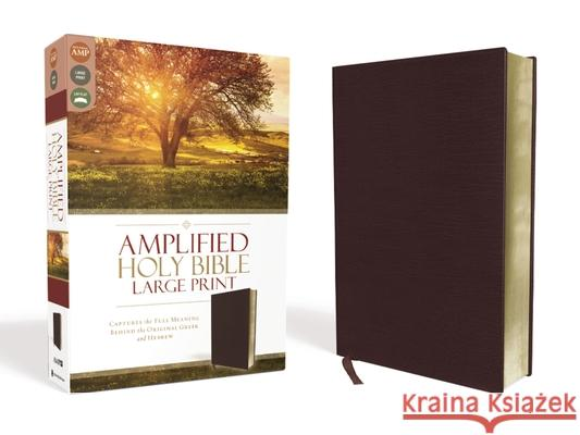 Amplified Bible-Am-Large Print: Captures the Full Meaning Behind the Original Greek and Hebrew  9780310444053