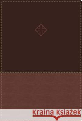 Amplified Study Bible, Imitation Leather, Brown, Indexed  9780310444756