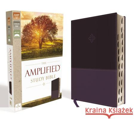 Amplified Study Bible, Imitation Leather, Purple, Indexed  9780310446538