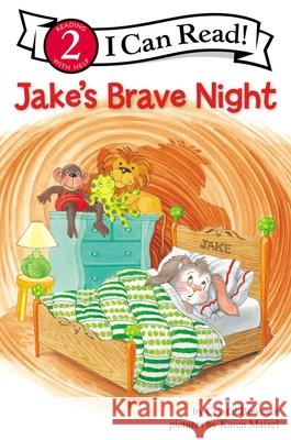 Jake's Brave Night: Biblical Values Crystal Bowman Karen Maizel 9780310714569