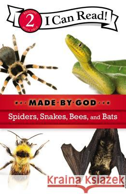 Spiders, Snakes, Bees, and Bats : Level 2  9780310720072