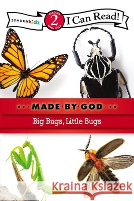 Big Bugs, Little Bugs : Level 2 Zondervan Publishing 9780310721864