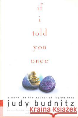 If I Told You Once Judy Budnitz 9780312267513