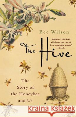 The Hive: The Story of the Honeybee and Us Bee Wilson 9780312371241
