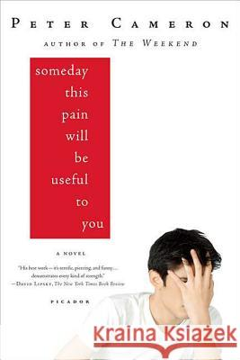 Someday This Pain Will Be Useful to You Peter Cameron 9780312428167