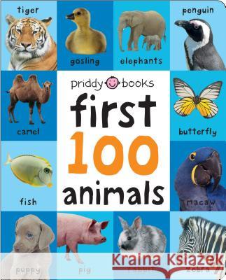 First 100 Animals Padded (Large) Roger Priddy 9780312529147