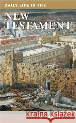 Daily Life in the New Testament James W. Ermatinger 9780313341755
